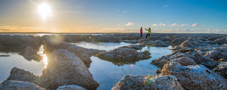 Patagonia Chile @Experiencias Laguna de los Cisnes