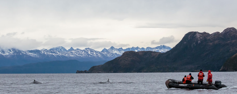 Patagonia Chile @Experiencias Parque Marino Francisco Coloane